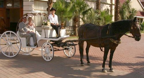 Now You Can Relive Your Childhood Fantasy And Arrive At The Church To Marry Man Of Dreams In A Horse Drawn Carriage An Affordable Price